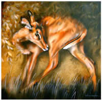 south african artist helena fourie oil paintings