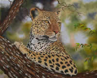 south african artist val odendaal oil paintings