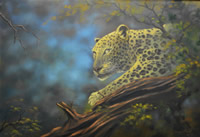 Dane Willers botswana artist oil paintings